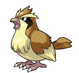 My pokemon coloring my pokemon card for Pidgey coloring page