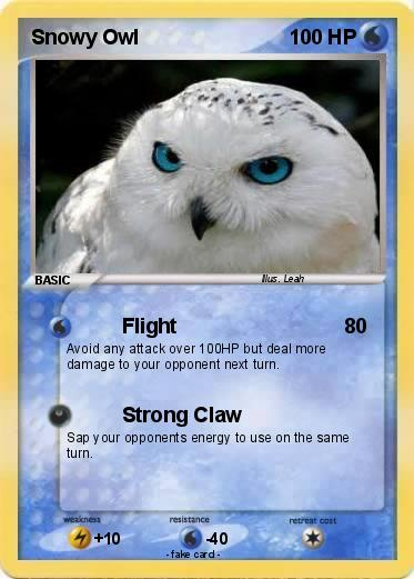 Snowy owl pokemon