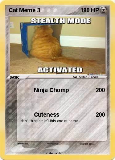 Pokemon Cat Meme 3