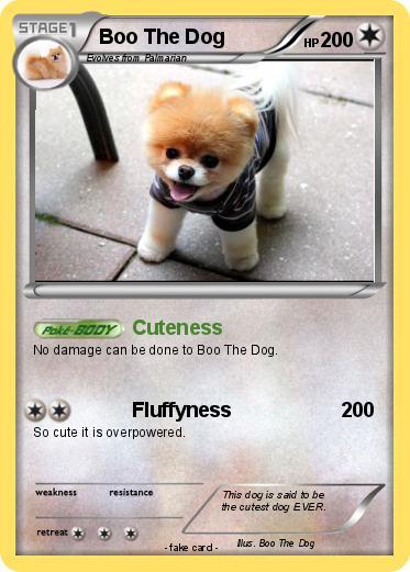 Pokmon Boo The Dog 14 Cuteness My Pokemon Card
