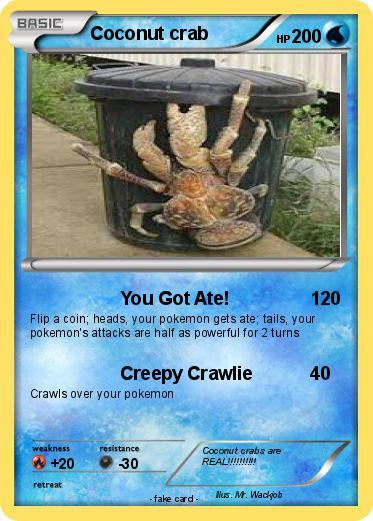 Coconut Crab Attacks