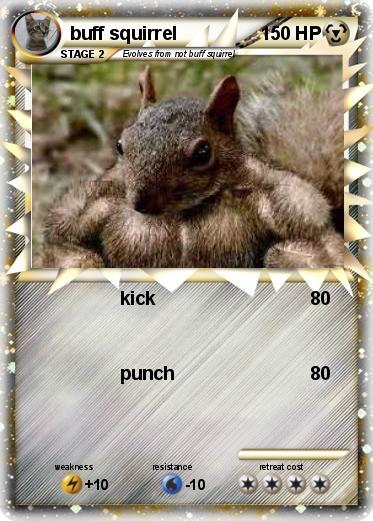 pok233mon buff squirrel 90 90 kick my pokemon card