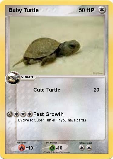 Pok 233 Mon Baby Turtle Cute Turtle My Pokemon Card