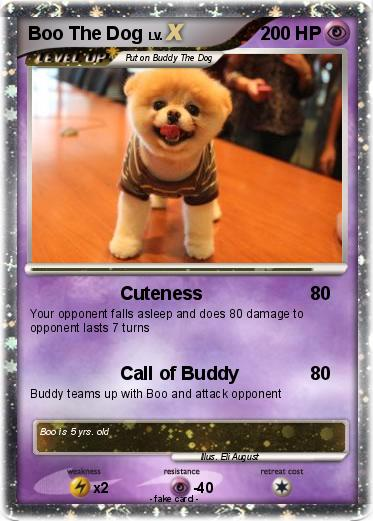 Pokemon boo the dog
