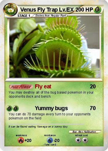 how to revive my venus fly trap