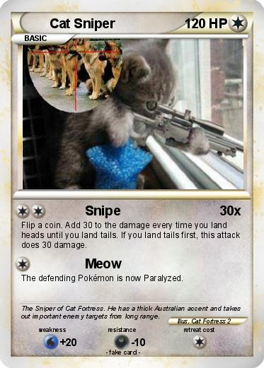 Cat With Sniper Rifle | www.imgkid.com - The Image Kid Has It!