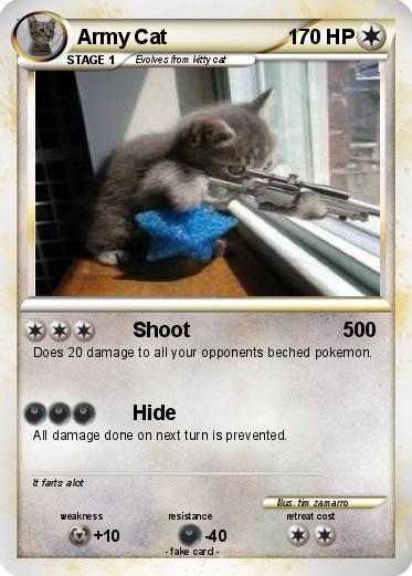 martha washington cat