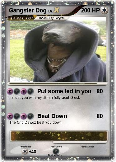 Pokemon Gangster Dog 2