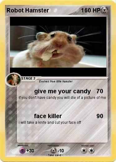 Pokemon Robot Hamster 3