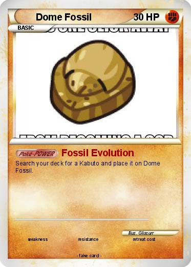Helix fossil evolution chart