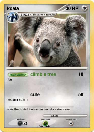 R Koalas Dangerous Pokemon koala