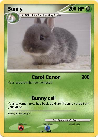 Pokémon Bunny 504 504