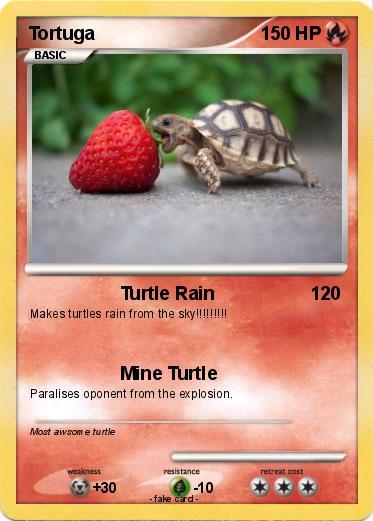 Mine turtle explosion - photo#51