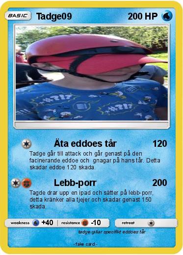 Lebb Porr