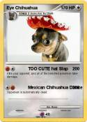 Eye Chihuahua