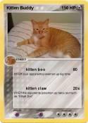 Kitten Buddy