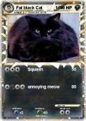 Fat black Cat