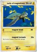turtle of