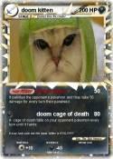 doom kitten
