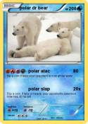 polar dr bear