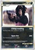 chimp with a
