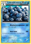 Lardhat(blueberry)