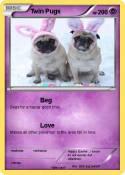 Twin Pugs