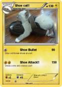 Shoe cat!!