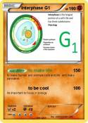Interphase G1