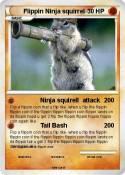 Flippin Ninja