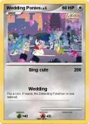 Wedding Ponies