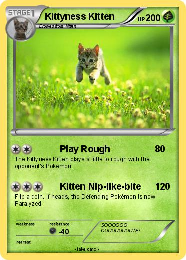 Pokemon Kittyness Kitten