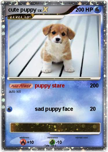 Pokemon cute puppy