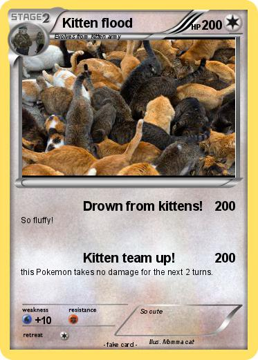 Pokemon Kitten flood