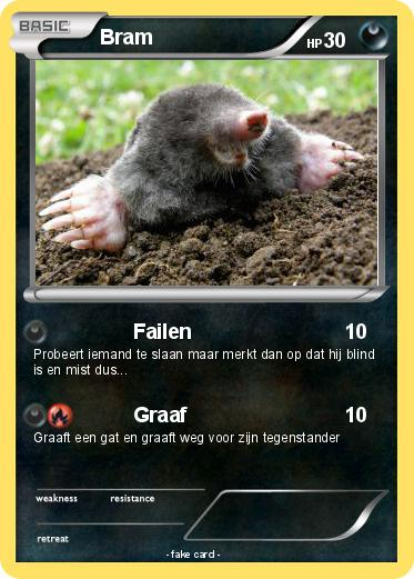 Pokemon Bram