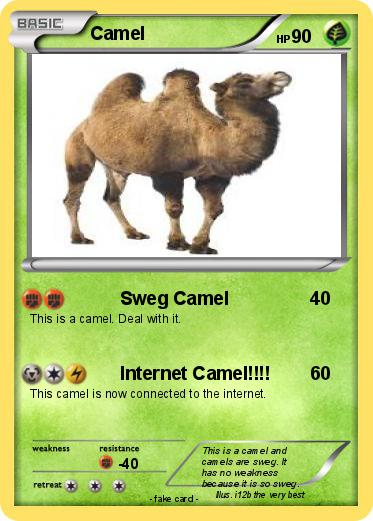 Pokemon Camel