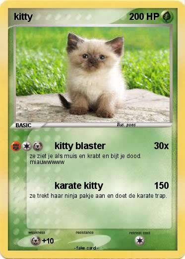 Pokemon kitty