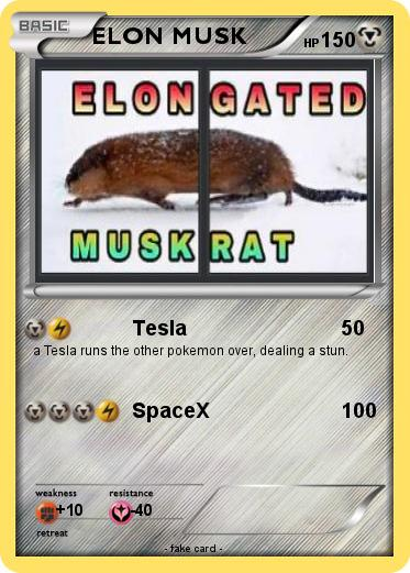 Pokemon ELON MUSK
