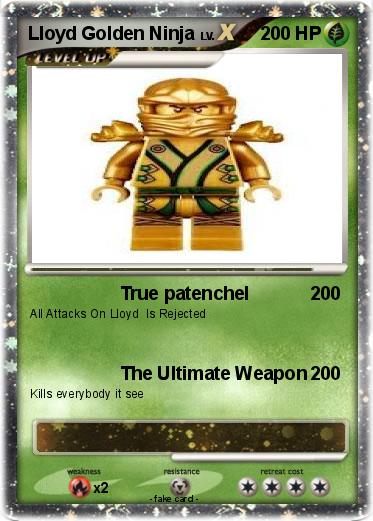 Pokemon Lloyd Golden Ninja