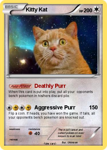 Pokemon Kitty Kat
