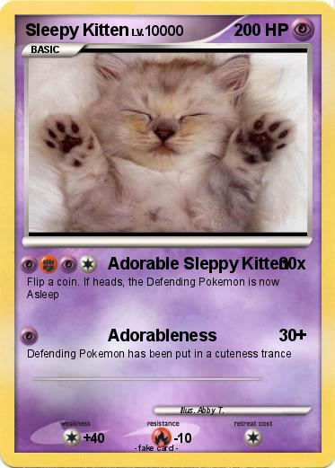 Pokemon Sleepy Kitten