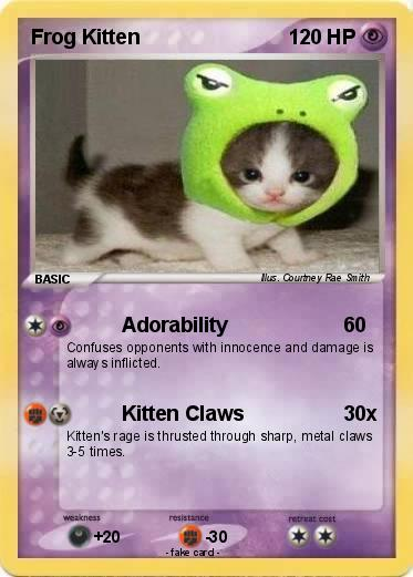 Pokemon Frog Kitten