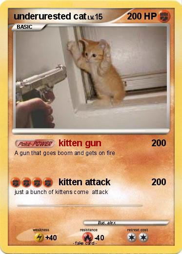 Pokemon underurested cat