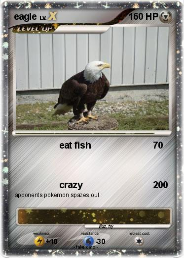 Pokemon eagle