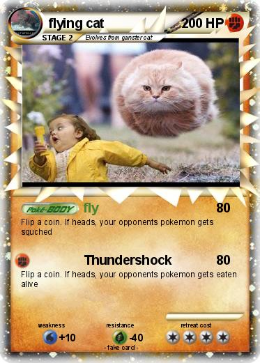 Pokemon flying cat