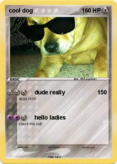 Pokemon cool dog