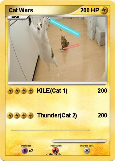 Pokemon Cat Wars