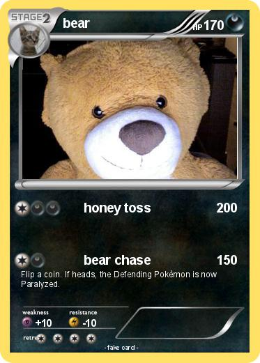 Pokemon bear
