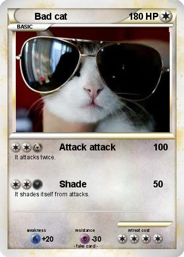 Pokemon Bad cat