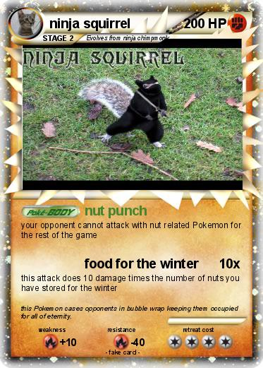Pokemon ninja squirrel